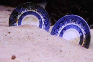 rust sand treasure ceramic under water ocean ship plates sink