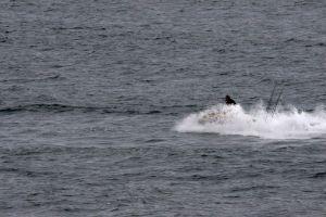sail holiday waves row boat ocean water nature fishing jetski