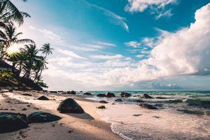 seashore rocks nature waves sky daytime seascape ocean sand palm trees