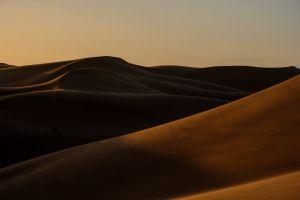 shadows sand desert dawn light