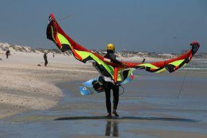 surf pepples nature holiday wings play kites sand ocean jump
