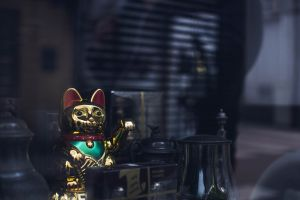 technology coffee maneki-neko blur indoors light race city championship man