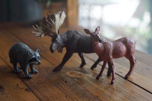 toys moose deer fauna toy animal raccoon