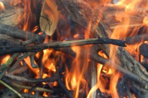 twigs fire nature outdoor fires night survival forest branches ritual