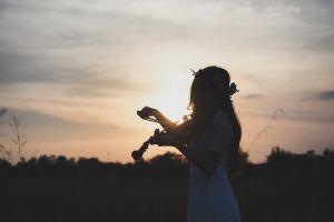violin dawn backlit girl woman person musician
