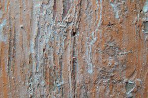 wall design retro nature frame pattern grain brown texture wallpaper