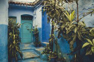 wall plants pots design door painting entrance exterior