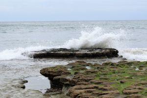 wave crashing beach surf wave