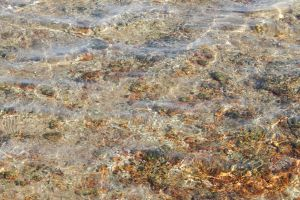 wave underwater under natural floor clear reef background texture sea