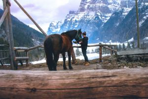 winter snow capped mountains mountains trekking girl horse girl horse wildwest passion mountain horse