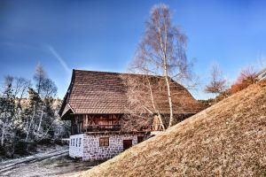 winter wooden cabin wood trees roof daylight landscape grass architecture