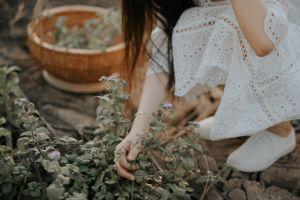 woman fashion photoshoot colors dress daytime person plants wear lady