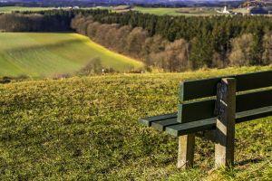 wood website header height bank hill grass bavaria nature forest