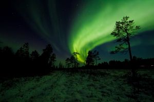 astronomy nightscape outdoorchallenge aurora borealis surreal northern lights space night sky atmosphere night