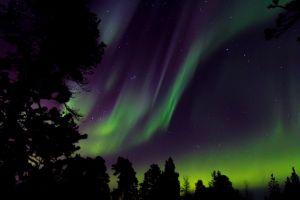 atmosphere surreal nightscape space astronomy dark northern lights outdoorchallenge stars night