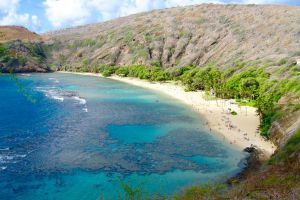 beach snorkel sand beach turquoise hawaii hawaiian snorkeling coral