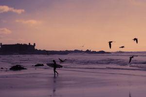 beach sport vacation surf sky sundown castle surfing wallpaper water