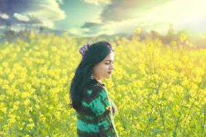 beautiful golden sun ambient beautiful flowers