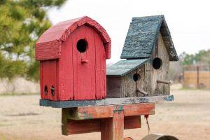 birdhouses garden rustic birdhouse