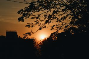 cityscape sunset nikon india mother nature outdoor orange sky golden hour nature vsco