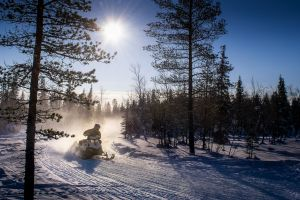 clear sky snowmobile nature sport sun trees snow