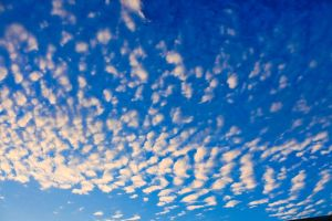 cloudscape nature high wind cumulus brightly environment beauty climate space