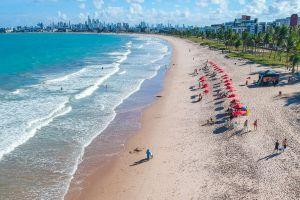 coconut trees seashore sea life sunset resort beach coastal sun brazil turquoise