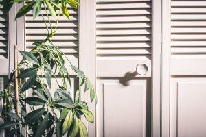 door interior wood design handle cabinet furniture contemporary knob plant