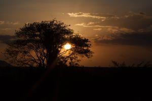 dry sun cloudy sky brazil sunset dramatic sky