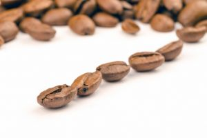 epicure freshness caffeine coffee beans quality food raw bean close-up natural