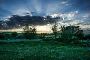 evening sun sun cloud dawn green sunrise sky blue sky