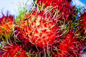exotic fruit tropical marketing growing wild delicious season background thailand