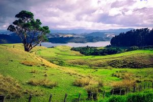 fence new zealand grass water field tree clouds landscape mountains
