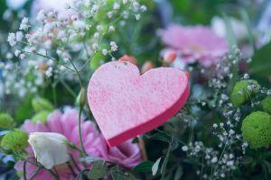 flora green rose heart woman tulip flower love