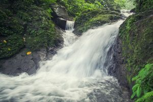 flow mountain mossy rocks waterfalls water long exposure daytime woods timelapse rocks