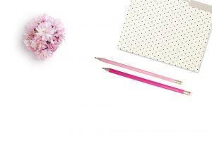 flowers colors feminine pencils white background folder