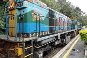 forest railway kuranda scenic railway national park