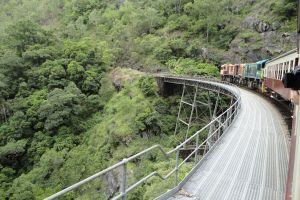 forest railway national park kuranda scenic railway