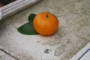 fresh fruit fruit nature photography natural food