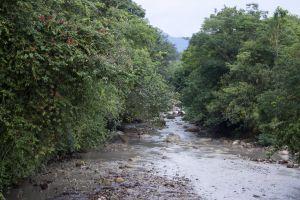 guamal water stream nature paradise quebrada