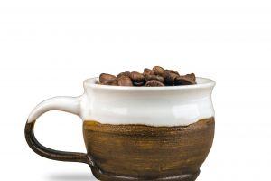 isolated raw food dark shadow seed aroma coffee close-up white