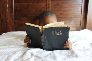 kid boy furniture bed book bindings leisure reading wood bible religious
