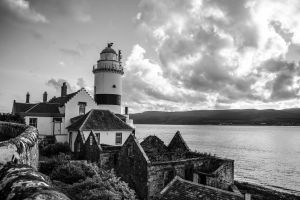 landscape daylight clouds water houses black and white trees sea seashore architecture