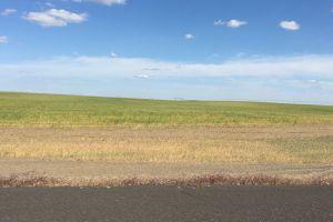 landscape white clouds fields farmland alfalfa side of the road blue sky