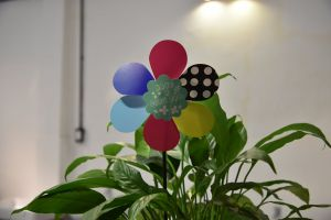 light colors growth botanical design houseplants