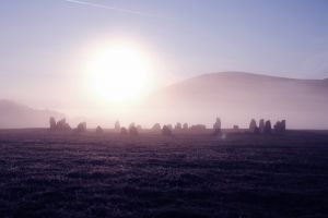 misty sheep mist stone circle dawn outdoor nature