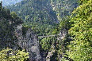 mountain bridge trees forest mountain