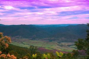 mountain daylight landscape dawn trees summer hill valley evening sunset