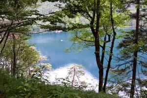 mountain lake mountain trees forest