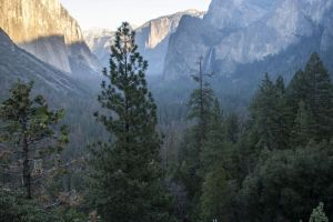 mountain photograph forest yosemite